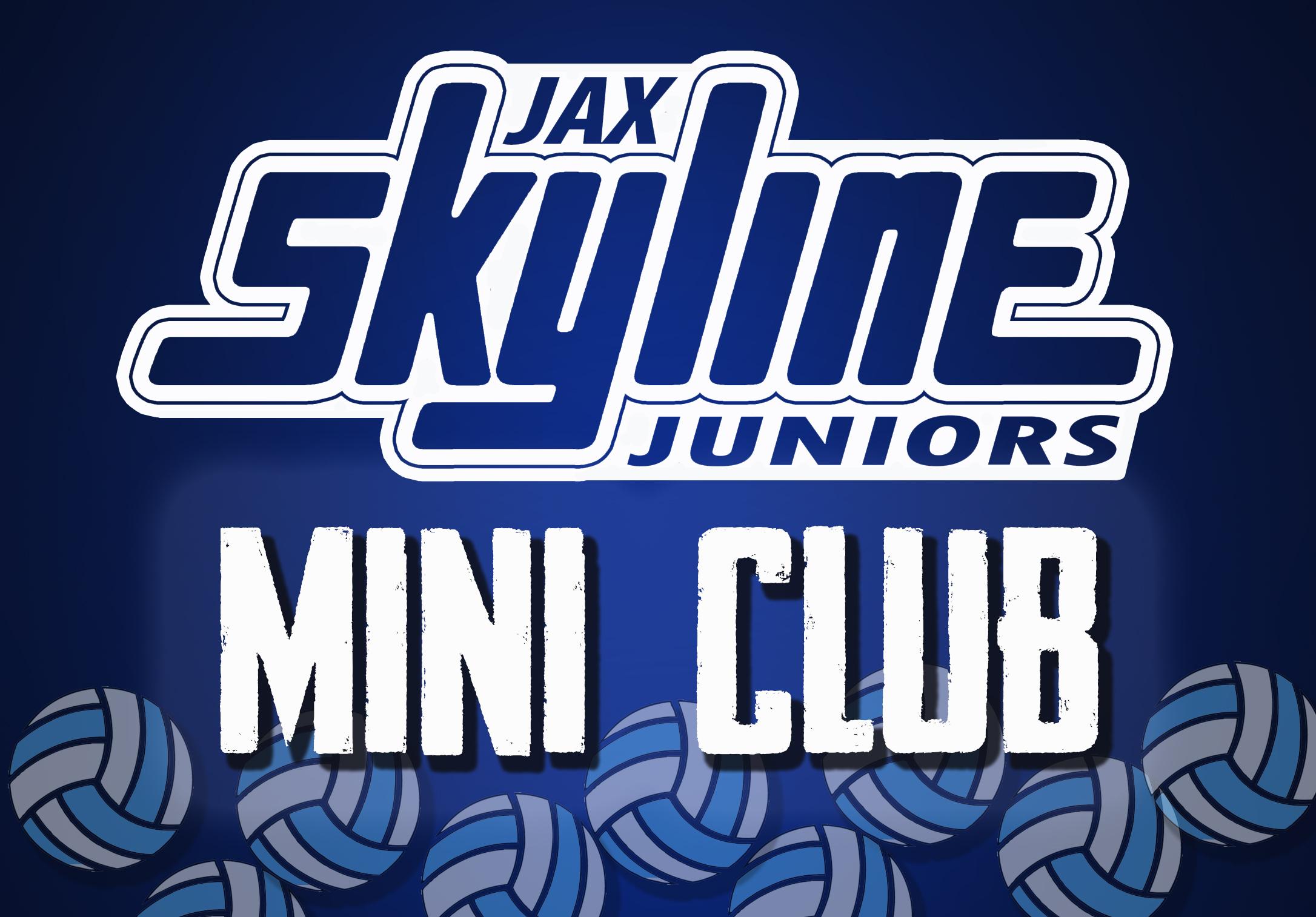 Fall Mini Club Jacksonville Skyline Volleyball